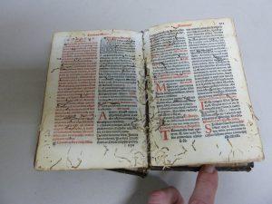 encuadernacion artesanal libro malestado insectos