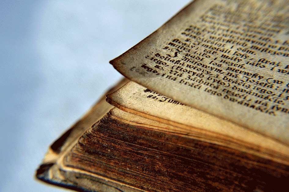 cursos restauracion libros