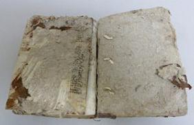 cuerpo de libro en restauracion