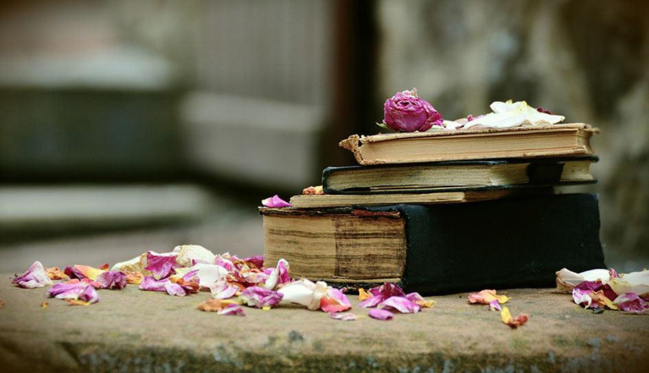 Por Navidad, regala encuadernación artesanal, regala vida a tus libros.